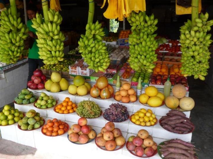 Fujairah Fruit Stand 1